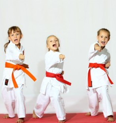 olathe karate